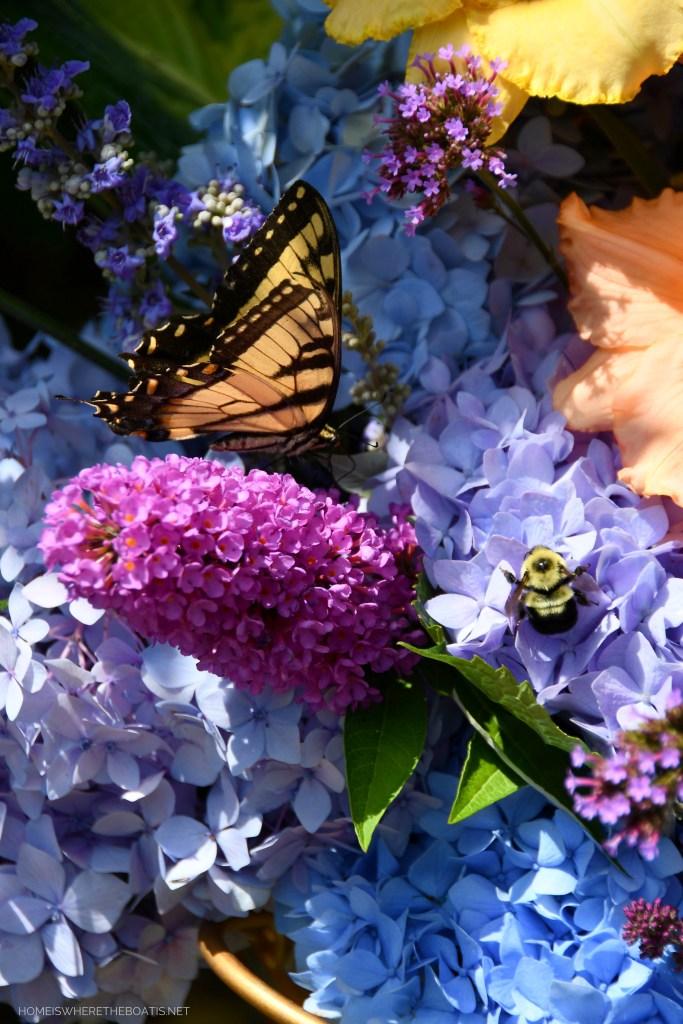 Butterfly and bumblebee | ©homeiswheretheboatis.net #flowers #DIY #garden #hydrangeas #nationalpollinatorweek
