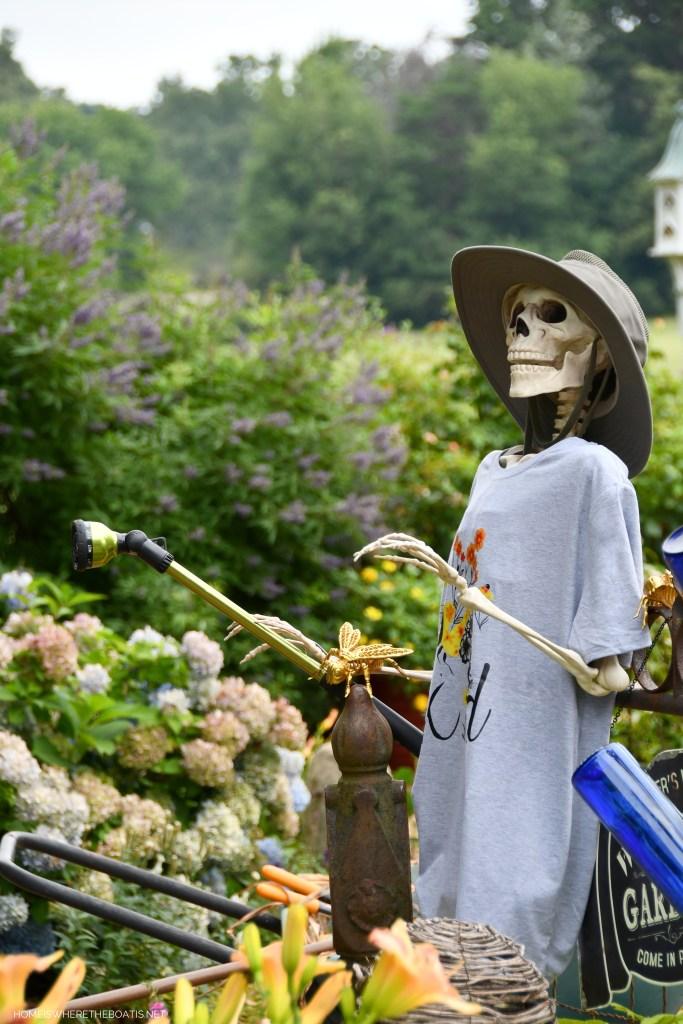 Skeleton Gardener | ©homeiswheretheboatis.net #skeleton #halloween #garden #flowers