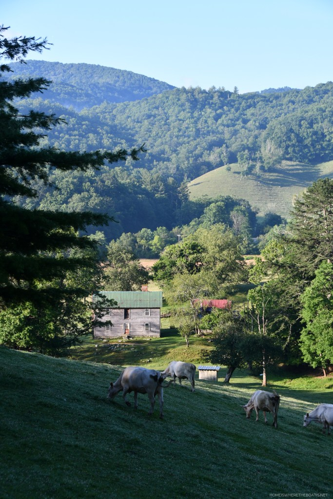Mountains with farm and cows | ©homeiswheretheboatis.net #mountains