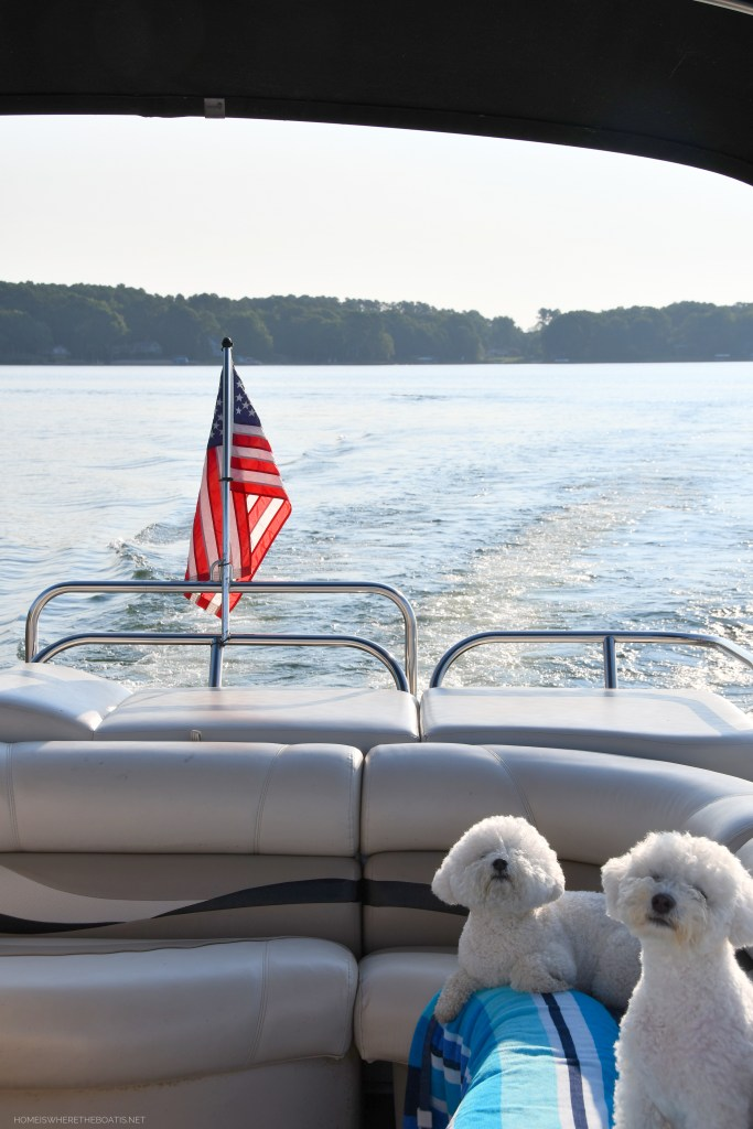 Weekend Waterview: The Dog Days of Summer   ©homeiswheretheboatis.net #boatingwithdogs #dogs #boat #lake #pontoon #LKN
