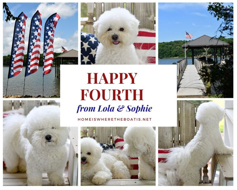 Happy Fourth of July from Lola and Sophie! | ©homeiswheretheboatis.net #dogs #bichonfrise #4thofjuly