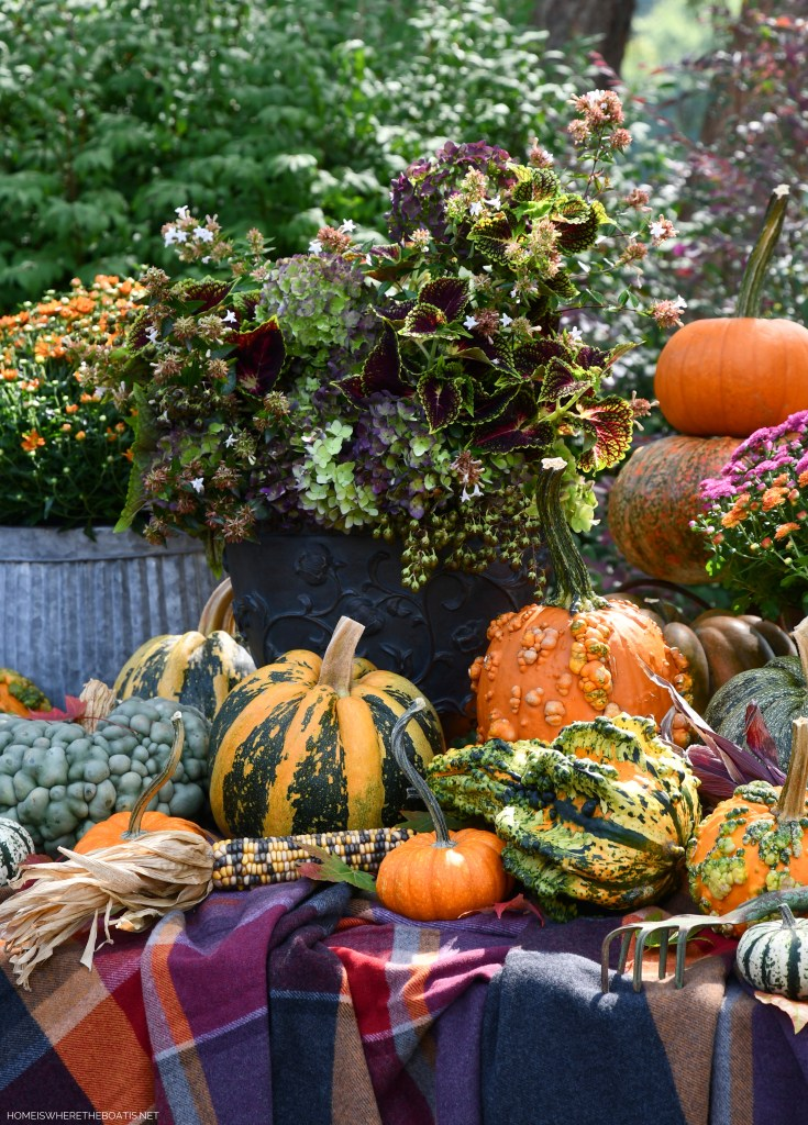 Welcoming Fall with a Colorful Harvest Arrangement of Hydrangeas, Pumpkins and Mums | ©homeiswheretheboatis.net #fall #arrangement #hydrangeas #pumpkins #mums