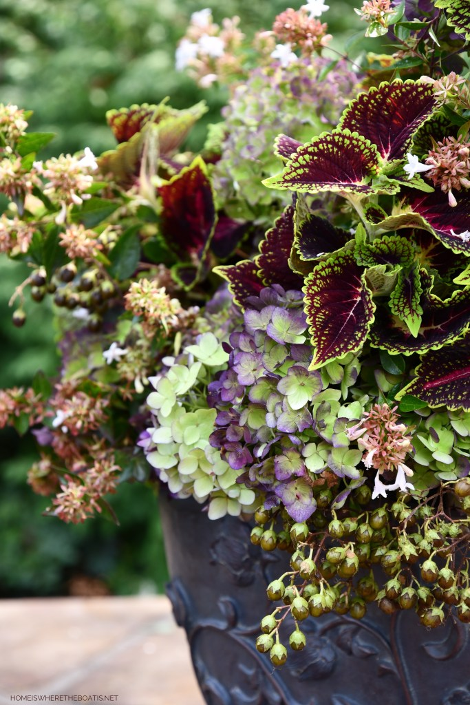'Welcome Fall' Floral Arrangement of Hydrangeas, Coleus, Abelia and Crepe Myrtle Seed Pods in Urn | ©homeiswheretheboatis.net #fall #arrangement #hydrangeas