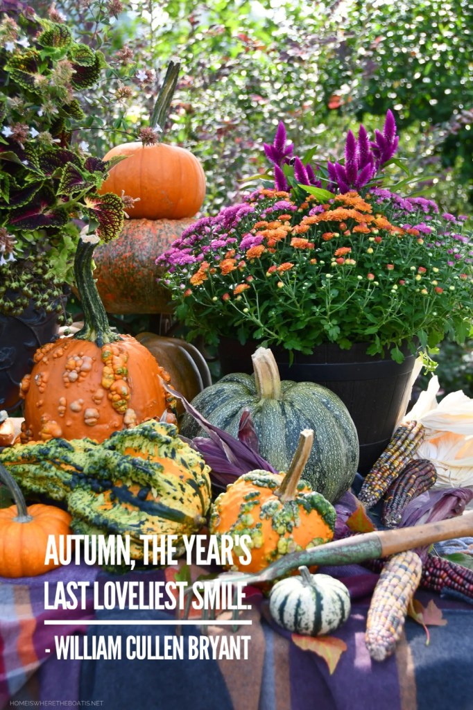 """""""Autumn, the year's last loveliest smile."""" - William Cullen Bryant 