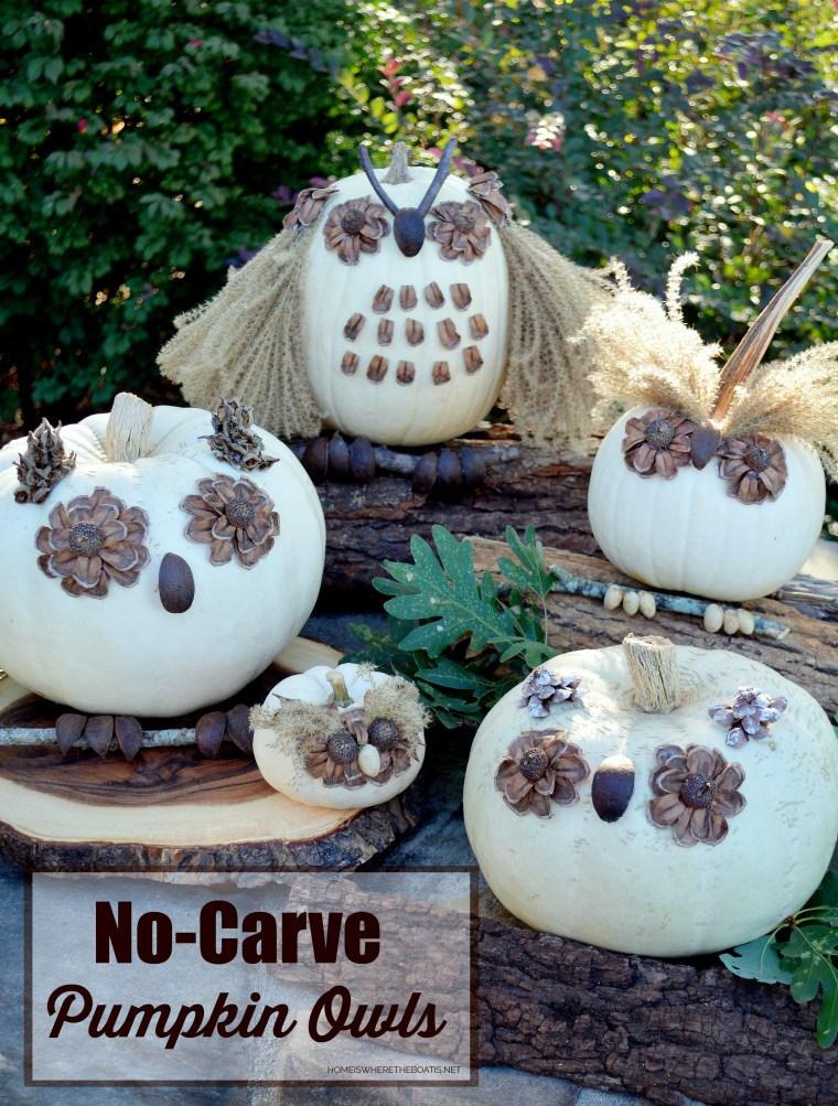 What a Hoot: No-Carve Pumpkin Owls! | ©homeiswheretheboatis.net #nocarve #pumpkin #owls