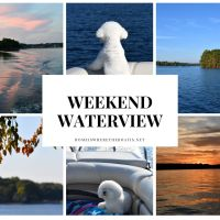 Weekend Waterview: Boating with Dogs, Sunset Views and Tree Update