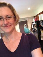 sensitive parakeets