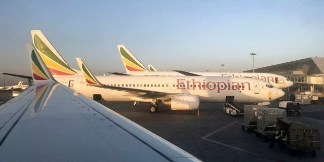 Aviation Security Experts: No Facts on Cause of Ethiopian Airliner Crash