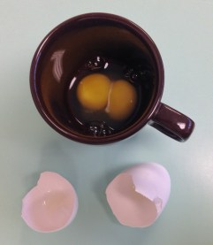 One Double Yolked Egg in a cup