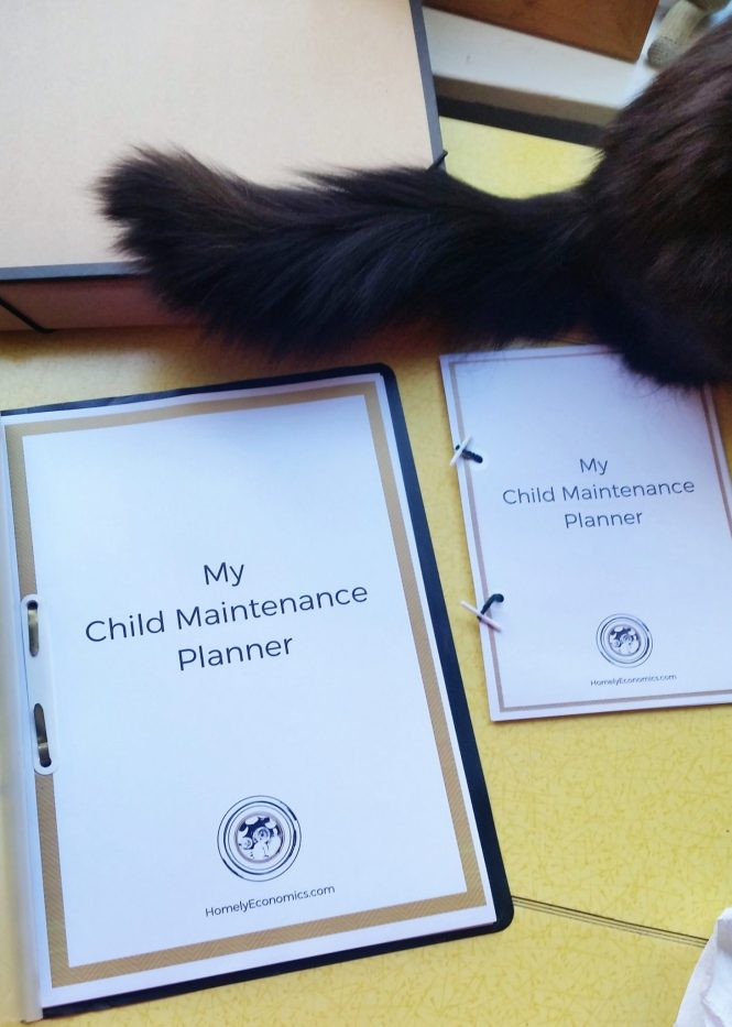 My cat is also keen on my new child maintenance planner printable. Download your copy!