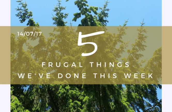I had to think hard, but I came up with five frugal things we've done this week! - 14/07/17