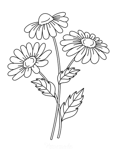 Cute Flowers Coloring Pages : flowers, coloring, pages, Beautiful, Flower, Coloring, Pages, Printables, Adults