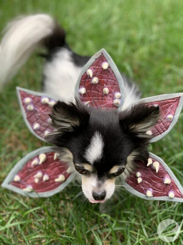 stranger things demodog costume diy