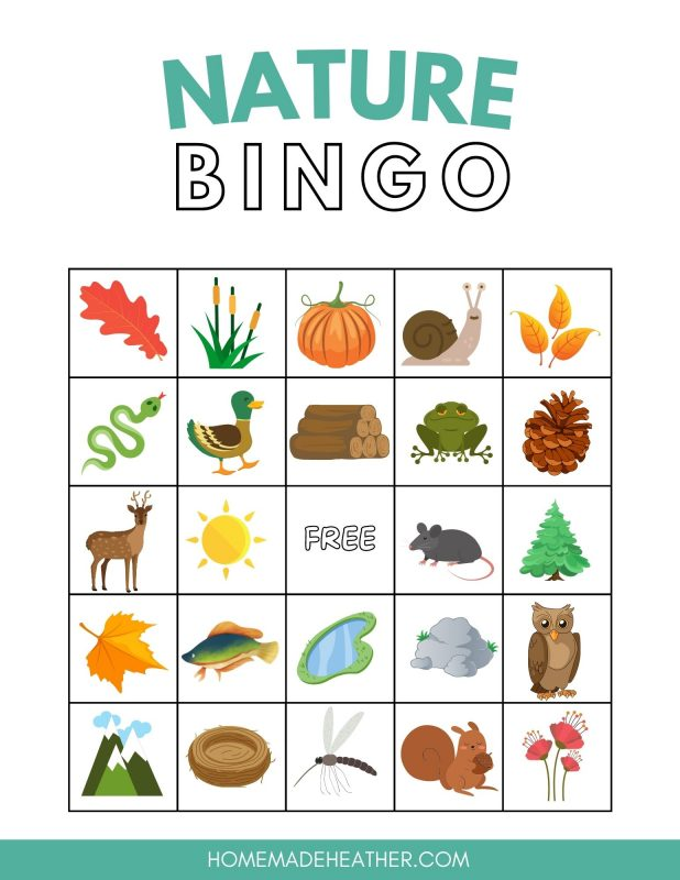 nature bingo printable