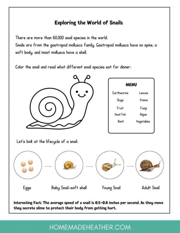 Backyard Snail Printable
