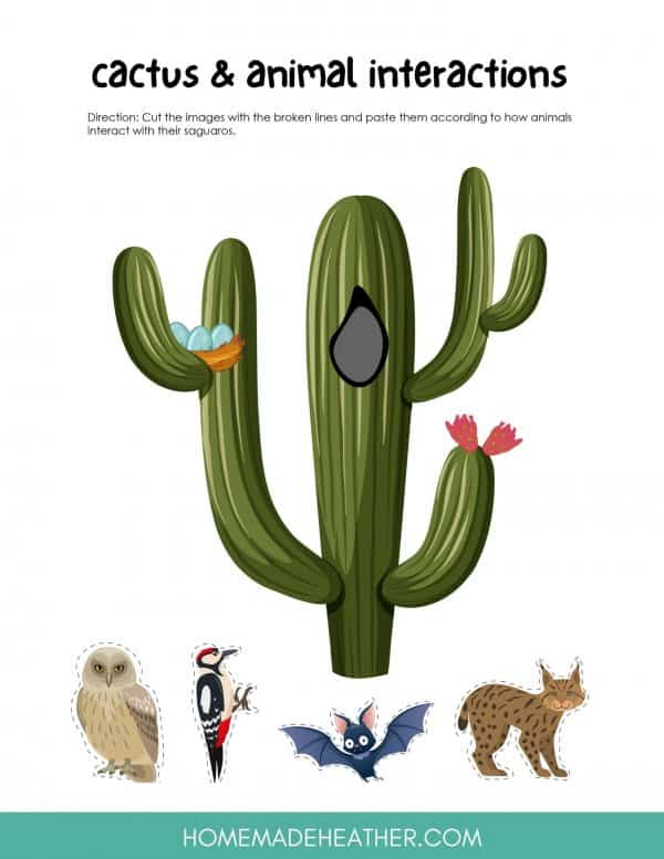 Cactus Printable Puzzle