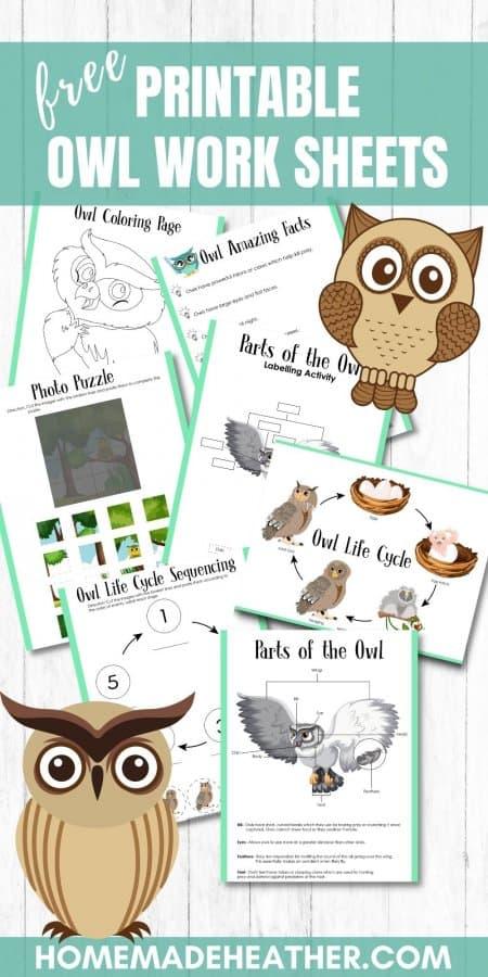 Free Owl Activity Printables
