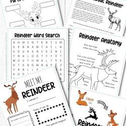 Free Reindeer Activity Printables
