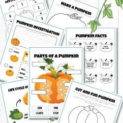 Free Pumpkin Activity Printables