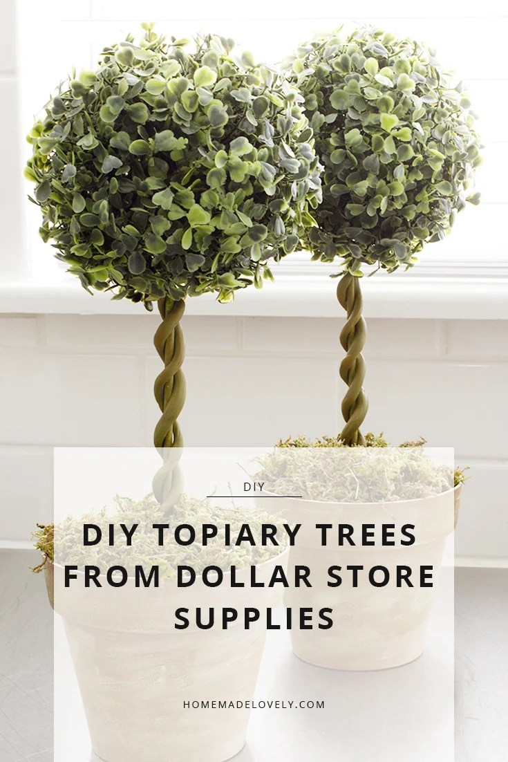 topiary trees diy