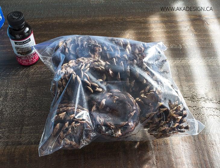 pine cones in bag