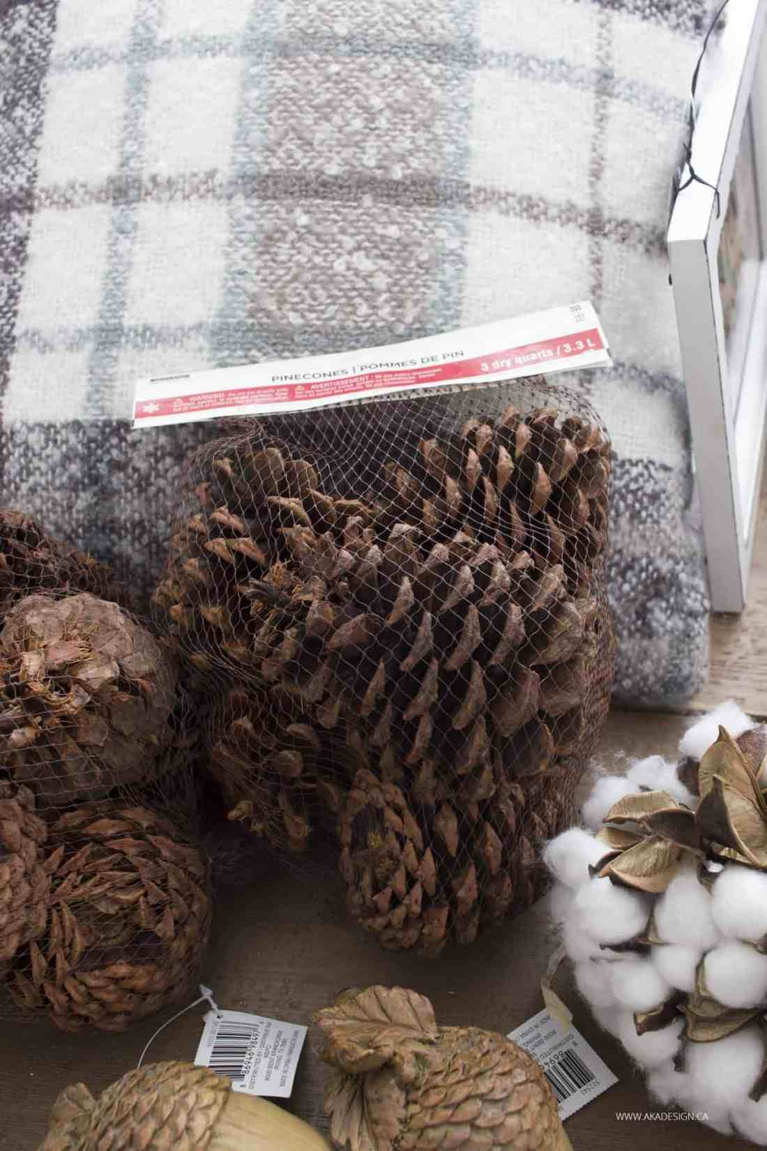 pillows and pine cones
