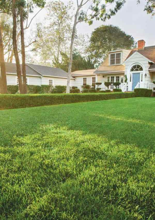 Curb Appeal 101 – 14 Ideas for Spring Landscaping