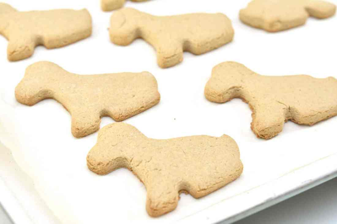 baked dog biscuits