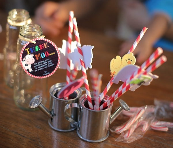 Homemade Parties_DIY Party_Barnyard_Miguel16