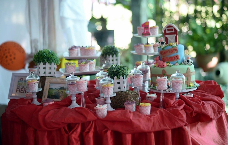 Homemade Parties_DIY Country Fair Party_Carly02
