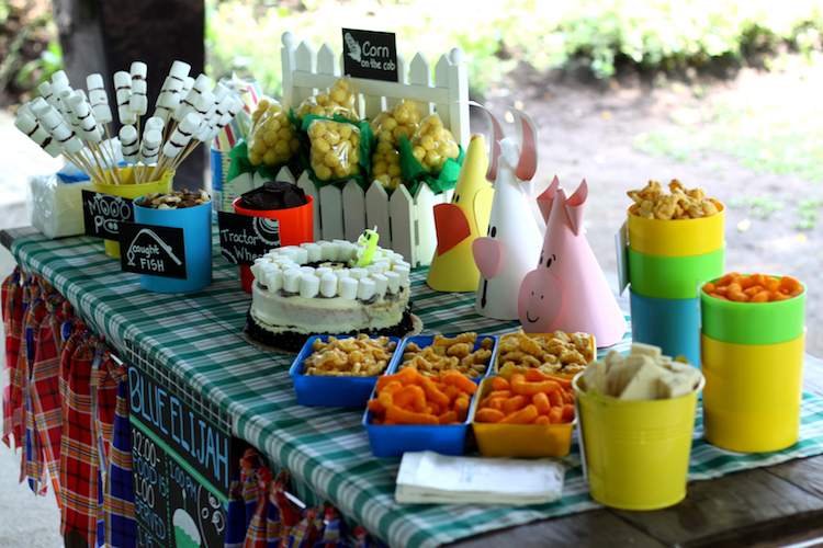 Homemade Parties DIY Party _Farm Party Blue07