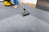 Securely Clean Your Carpet with the Best in the Industry