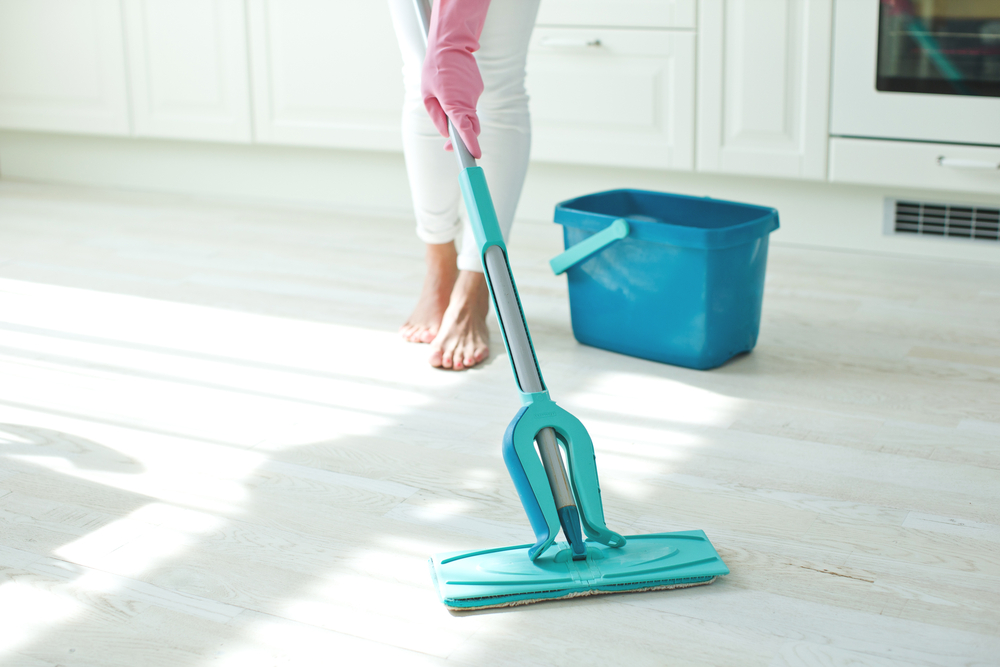 How the Professionals Clean Your Home  Apartment Cleaning