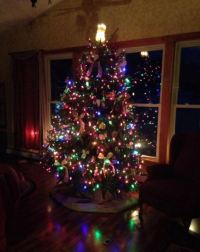 Christmas Tree for Living Room - Living Room Designs