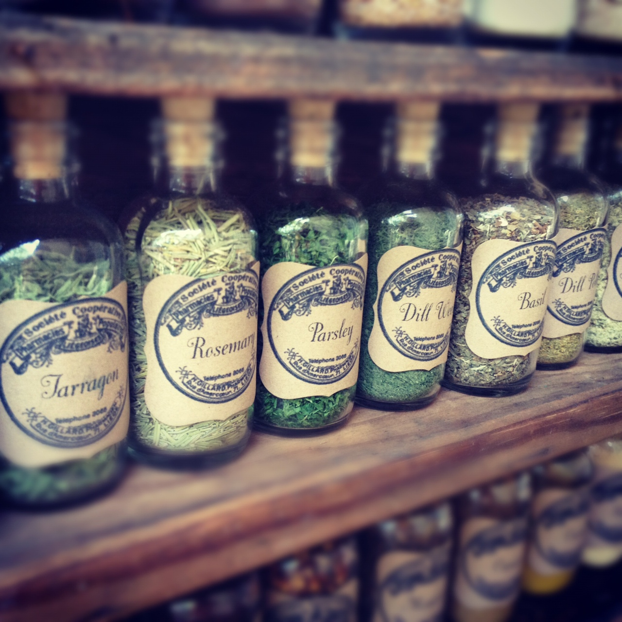 DIY Vintage Apothecary Spice Bottles  Homemaker Chic