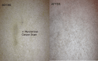 How to Clean Stubborn Carpet Stains with an Iron and ...