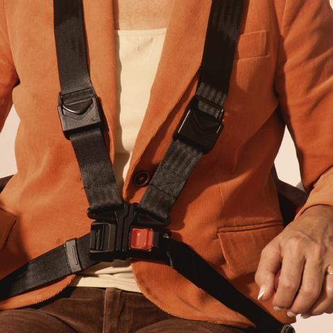 Handicare seat harness