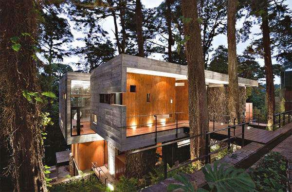 Modern Tree House With Wood Architecture In Guatemala Home