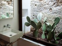 indoor-cactus-bathroom-ideas