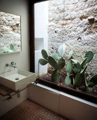 indoor-cactus-bathroom-ideas
