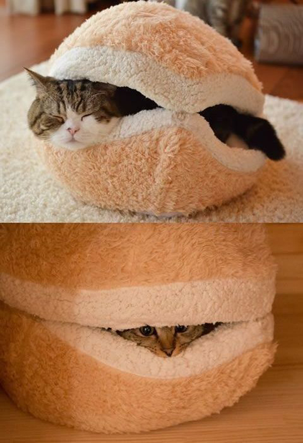 cutecatbeddecoration