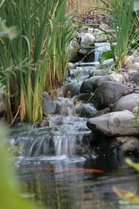 simple-backyard-pond-waterfalls