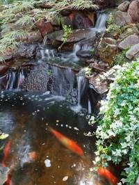 35 Dreamy Garden With Backyard Waterfall Ideas   Home ...