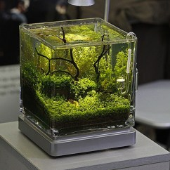 Where Can I Buy An Island For My Kitchen Summit Kitchens 20 Most Creative Aquariums With Tiny Ideas | Home Design ...