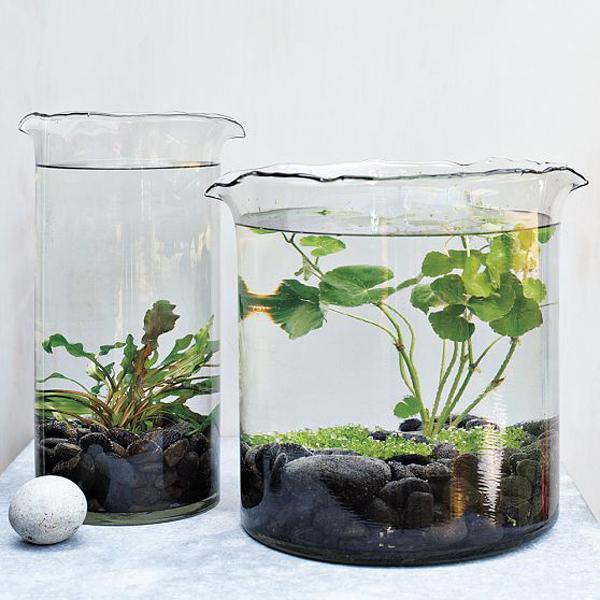 diy indoor water garden ideas