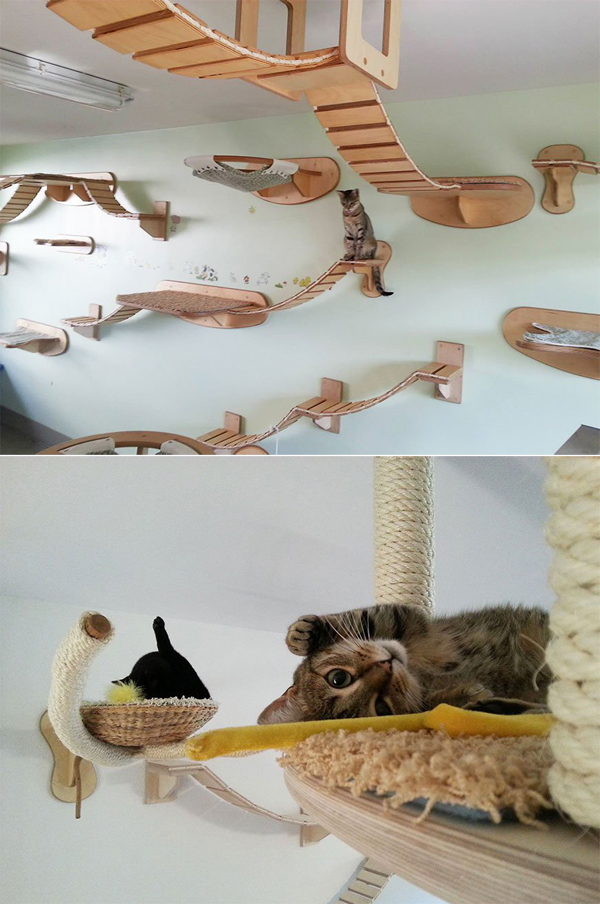 10 Unique And Creative Cat Furniture Ideas  Home Design