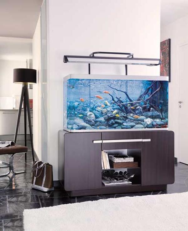 Minimalist Aquarium Decor Ideas
