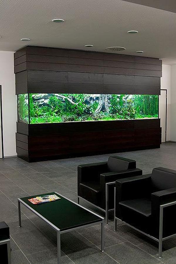 Wooden Big Aquarium In Office