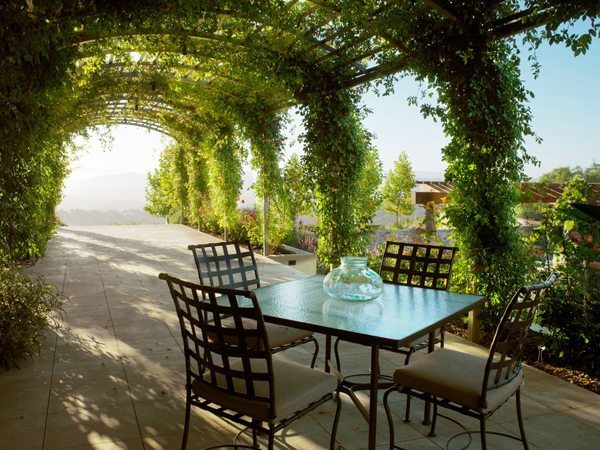 20 Beautiful And Natural Grape Arbor Ideas  Home Design