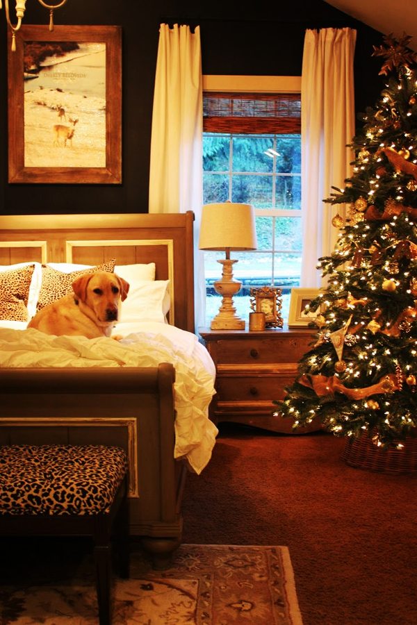 10 Cozy Homes Decor To Snuggle In This Christmas  Home Design And Interior